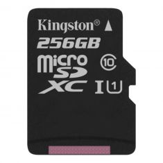 256GB microSDHC Canvas Select 80R CL10 UHS-I, up to 80MB/s read, 10MB/s write